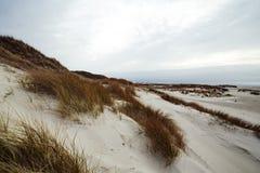 Sand dunes on the island of Amrum in spring on a cloudy day. Sand dunes on the island of Amrum in spring on a cloudy, atmospheric day at low tide. Idyllic stock photo