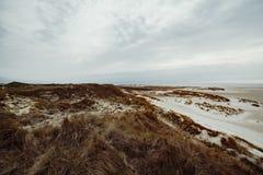 Sand dunes on the island of Amrum in spring on a cloudy day. Sand dunes on the island of Amrum in spring on a cloudy, atmospheric day at low tide. Idyllic royalty free stock photos