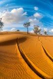 Sand dunes. Israel. Negev Desert. Dunes in Ramat Hovav Stock Photo