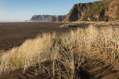 Sand dunes at Karekare beach Stock Images