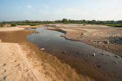 Sand dunes of Khong river and water plant. Stock Photos