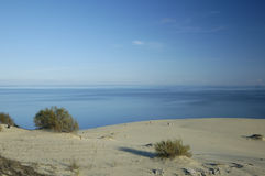 Sand dunes on Kurshskaya spit. The sand dunes on Kurshskaya spit near Kaliningrad. Russia Stock Photography