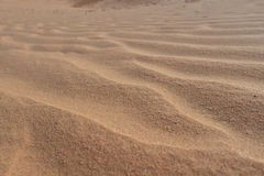 The sand dunes Stock Photography