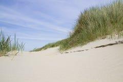 Sand dunes Landscape Stock Photography