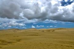 Sand Dunes Landscape Stock Image