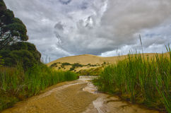 Sand Dunes Landscape Royalty Free Stock Image