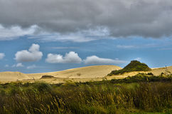 Sand Dunes Landscape Royalty Free Stock Images