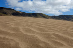 Sand dunes, Lanzarote. Sand dunes on Famara beach, Lanzarote Stock Image