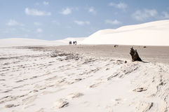 Sand dunes of the Lencois Maranheses in Brazil Royalty Free Stock Image