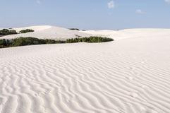 Sand dunes of the Lencois Maranheses in Brazil Stock Images