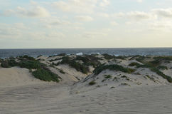 Sand Dunes Located on the North Coast of Aruba Stock Photos
