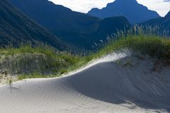 Sand dunes on Lofoten island royalty free stock images