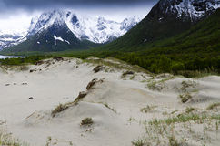 Sand dunes in Lofoten Islands Royalty Free Stock Photos