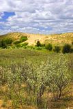 Sand dunes in Manitoba Stock Image