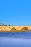 Sand dunes of '' Mas Palomas'' Royalty Free Stock Image
