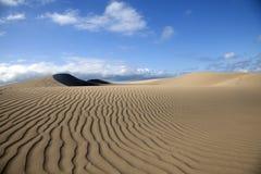 Sand Dunes in Maspalomas. Gran Canaria, Canary Islands, Spain royalty free stock image