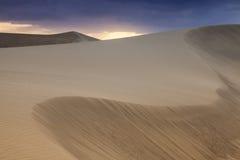 Sand Dunes in  Maspalomas Stock Images