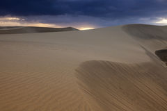 Sand Dunes in  Maspalomas Royalty Free Stock Photos