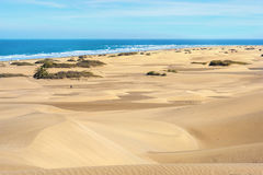 Sand dunes of Maspalomas. Gran Canaria. Canary Islands, Spain. Landscape with sand dunes on seaside of Maspalomas. Gran Canaria, Canary Islands, Spain stock photo