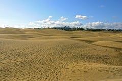 Sand Dunes of Maspalomas, Gran Canaria. SPAIN. Beautiful view of Sand Dunes of Maspalomas, Gran Canaria. SPAIN Royalty Free Stock Photography