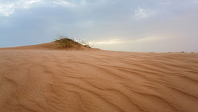 Sand dunes in Mauritania Royalty Free Stock Images