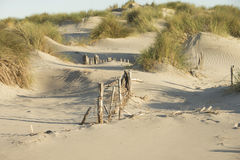 Sand Dunes on the Mediterranean Sea Royalty Free Stock Images