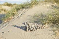 Sand Dunes on the Mediterranean Sea Stock Image