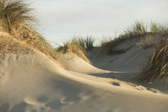 Sand Dunes on the Mediterranean Sea Stock Photos