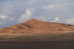 Sand dunes of Merzouga Royalty Free Stock Image