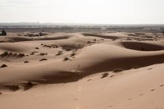 Sand dunes in Merzouga desert, Morocco. Sand dunes in the morning light in Merzouga desert, Morocco royalty free stock photos