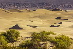 Sand Dunes in the Morning Royalty Free Stock Photos