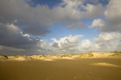 Sand dunes in morning light Stock Images