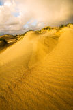 Sand Dunes in Morning Light Royalty Free Stock Images