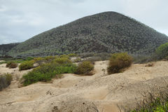 Sand dunes and mountain in Floreana island. Galapagos royalty free stock image