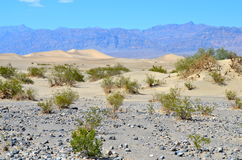 Sand Dunes And Mountains At Death Valley National Park, California Stock Images
