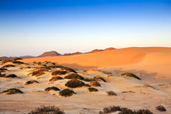 Sand dunes, mountains and scrub at sunset Stock Photo