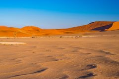Sand dunes in the Namib desert at dawn, roadtrip in the wonderful Namib Naukluft National Park, travel destination in Namibia, Afr Royalty Free Stock Photo