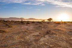 Sand dunes in the Namib desert at dawn, roadtrip in the wonderful Namib Naukluft National Park, travel destination in Namibia, Afr Royalty Free Stock Photos