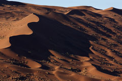 Sand dunes in the Namib Desert in Namibia. Sand dunes in the Namib Desert near Sossusvlei in Namibia Stock Image