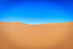 Sand dunes in the Namib desert. Royalty Free Stock Images