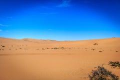 Sand dunes in the Namib desert. Stock Photography
