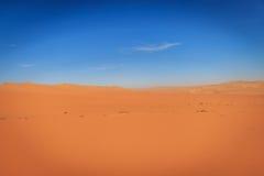 Sand dunes in the Namib desert. Royalty Free Stock Photo