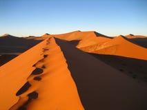 Sand dunes in Namib desert Royalty Free Stock Image