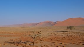 Sand dunes in Namib-Naukluft National Park, Namibia. Sand dunes in Namibia-Naukluft National Park consist of 5-million-years-old sands Stock Photos