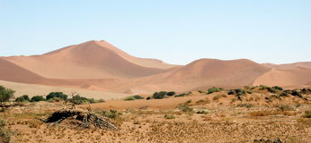 Sand dunes of Namibia. Sand dunes of Sossusvlei in Namibia Stock Photos