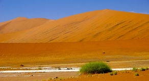 Sand dunes of Namibia. Sand dunes of Sossusvlei in Namibia Royalty Free Stock Images