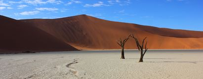 Sand dunes and dead trees at Deadvlei Namibia. stock photo