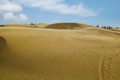 Sand dunes near Jaisalmer, Rajasthan, India. Sand dunes in a desert, Jaisalmer, Rajasthan, India Stock Photos