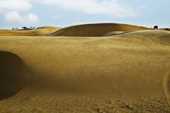 Sand dunes near Jaisalmer, Rajasthan, India Royalty Free Stock Images