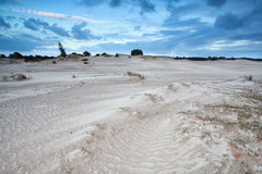 Sand dunes in Netherlands Stock Images